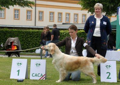 coleen austria 2010