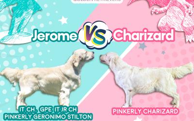 Super cuccioli in arrivo da Jerome e Charizard!